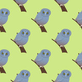 Seamless pattern with the image of owls. Owls on a green background. Seamless pattern royalty free illustration