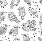 Seamless pattern with ink hand drawn exotic birds Royalty Free Stock Photos