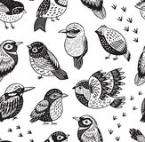 Seamless pattern with ink hand drawn exotic birds Stock Image