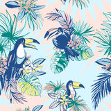 Seamless pattern ink Hand drawn Tropical palm leaves, flowers, birds. Royalty Free Stock Photo