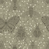 Seamless pattern with insects. Stock Photos