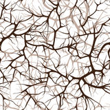 Seamless pattern, interlacing of branches Stock Photos