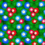Seamless pattern with ipomoea flowers Royalty Free Stock Photos