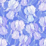 Seamless pattern with iris Royalty Free Stock Images