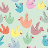 Seamless pattern isolated funny birds Stock Images
