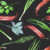A seamless pattern with the isolated watercolor spices (spicy herbs). Onion green, dill, parsley, cilantro, red chili peppers and basil, painted on a dark Stock Photography