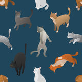 Seamless pattern of isometric cartoon cats. Royalty Free Stock Photo