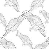 Seamless pattern Jaco parrot the coloring  Vector illustration Royalty Free Stock Photos