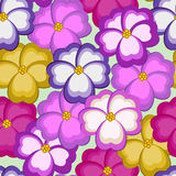 Seamless pattern with kiss-me flowers Stock Photography