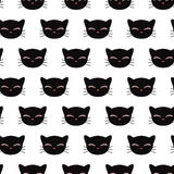 Seamless pattern with kitty faces Royalty Free Stock Images