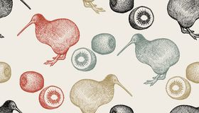 Seamless pattern with kiwi birds and fruits. Kiwi birds and fruits. Seamless pattern with animals and food. Hand drawing of wildlife. Vector illustration art Royalty Free Stock Photo