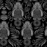 Seamless pattern with lace decorative owls Royalty Free Stock Photo