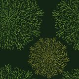 Seamless-pattern-of-lace-flowers royalty free illustration