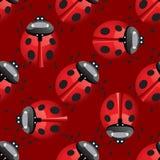 Seamless pattern with lady bug Stock Photo