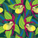 Seamless pattern with Lady's slipper orchid in yellow and striped leaves on the dark green background. Royalty Free Stock Images