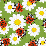 Seamless pattern with ladybirds. And flowers Stock Photography