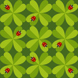 Seamless pattern with ladybug Stock Photography