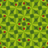 Seamless pattern with ladybug Stock Photo