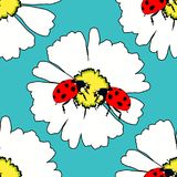Seamless pattern is ladybug insect nature on daisy flower vector Royalty Free Stock Photos
