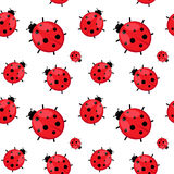 Seamless pattern with  ladybug isolated on white. Stock Photos