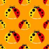 Seamless pattern with ladybug Stock Photos