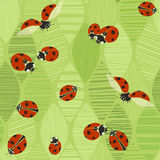 Seamless pattern with ladybugs on a background of abstract leave Royalty Free Stock Photo