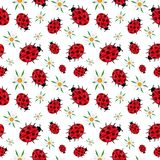 Seamless pattern of ladybugs and daisies white stock illustration