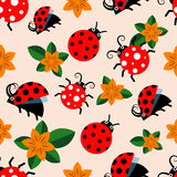 Seamless pattern with ladybugs and flowers Stock Images