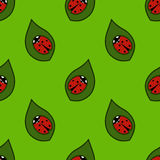 Seamless pattern - ladybugs. Ladybug on a green background. Seamless pattern stock illustration