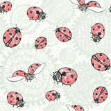 Seamless pattern with ladybugs. Vector art illustration. Kids ba. Seamless pattern with doodle flowers and cute ladybirds. Summer background Stock Images