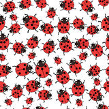 Seamless pattern with ladybugs Vector Royalty Free Stock Image