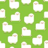 Seamless pattern with lambs. White fluffy sheep Royalty Free Stock Photos