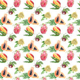 Seamless pattern of a large tropical fruit Royalty Free Stock Photography
