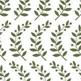Seamless pattern with laurel branches Stock Photo