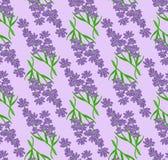 Seamless pattern of lavender flowers vector illustration