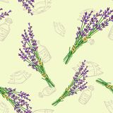 Seamless pattern with lavender Stock Photo