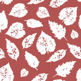 Seamless pattern with leaf,autumn leaf background.  Royalty Free Stock Images
