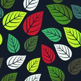 A seamless pattern with leaf,autumn leaf background Royalty Free Stock Photo