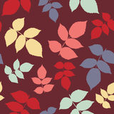 Seamless pattern with leaf, autumn leaf background. Abstract ras Stock Image