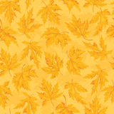 Seamless pattern with leaf,autumn leaf background. Royalty Free Stock Photos
