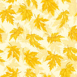 Seamless pattern with leaf,autumn leaf background. Vector illustration. Royalty Free Stock Photo