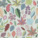 Seamless pattern of leaf. Autumn seamless Royalty Free Stock Images