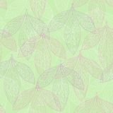 Seamless pattern of leaf peonies Stock Photography