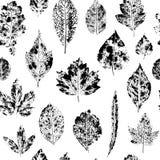 Seamless pattern of leaf stamps vector illustration