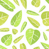 Seamless pattern with leafs Royalty Free Stock Photography