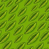 Seamless pattern with leafs. Template for wallpapers, site background, print design, cards, menu design, invitation. Summer vector illustration