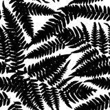 Seamless pattern with leafs tropical fern palm for fashion textile or web background. Black silhouette on white background. Vector Stock Images