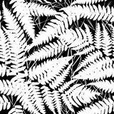 Seamless pattern with leafs tropical fern palm for fashion textile or web background. white silhouette on Black background. Vector Stock Photo