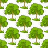 Seamless pattern of leafy green trees Stock Image
