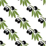 Seamless pattern of a leafy olive branch Royalty Free Stock Image